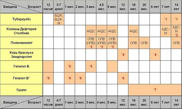 Календарь проведения вакцинаций в соответствии с возрастом