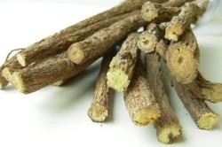 Использование корня солодки для лечения хронического бронхита