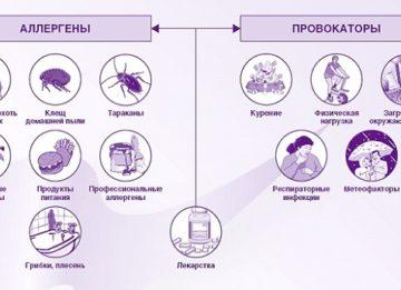 Таблетки Кларитин от аллергии - инструкция по применению