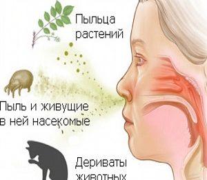 Спрей и капли от аллергического ринита в нос