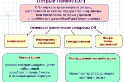 Схема хронического бронхита